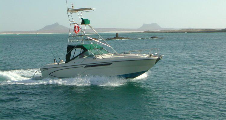Barca da Pesca Capo verde